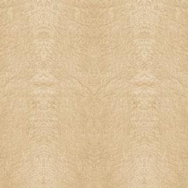 Birdseye Maple Light 4' x 8' Panels (Fusion, Wood Collection)